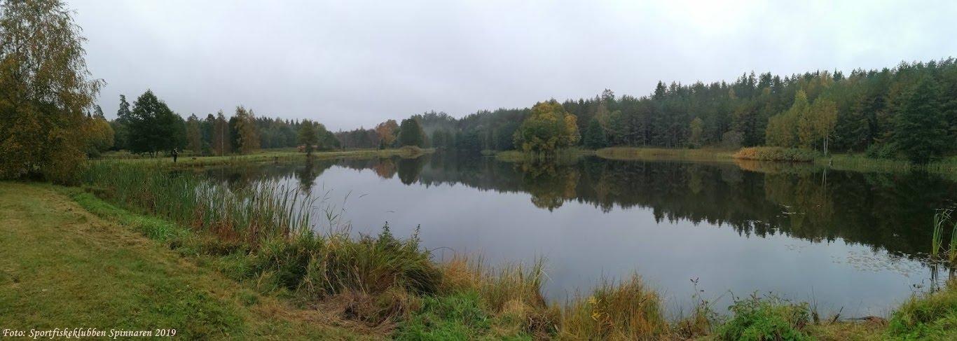 massor av fisk i dammen dejtingsajt
